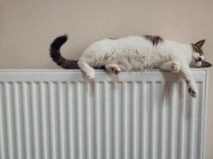 radiator warning signs